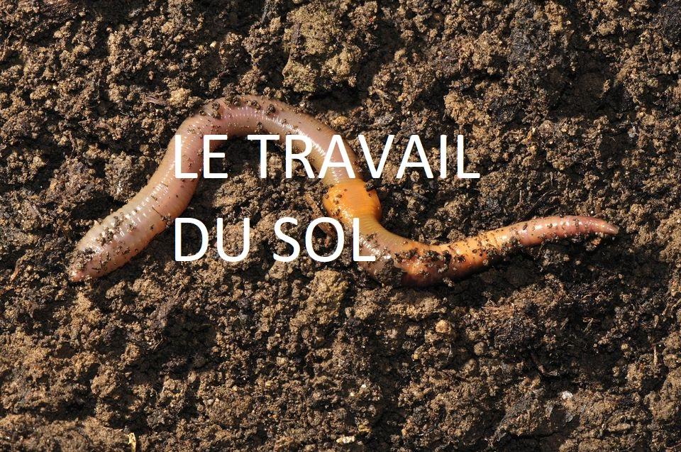 travail du sol sans labour respect de la bio diversité bio chanvre félinois